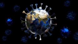 Sinekten Koronavirüs Bulaşır mı?